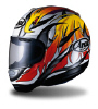 Arai's Quantum Helmet with Raptor style paint job.  Click here for the Arai site.